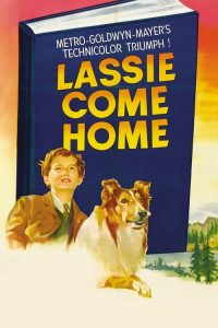 Lassie, la cadena invisible