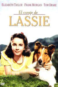 El coraje de Lassie